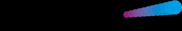 logo_vf-lanz